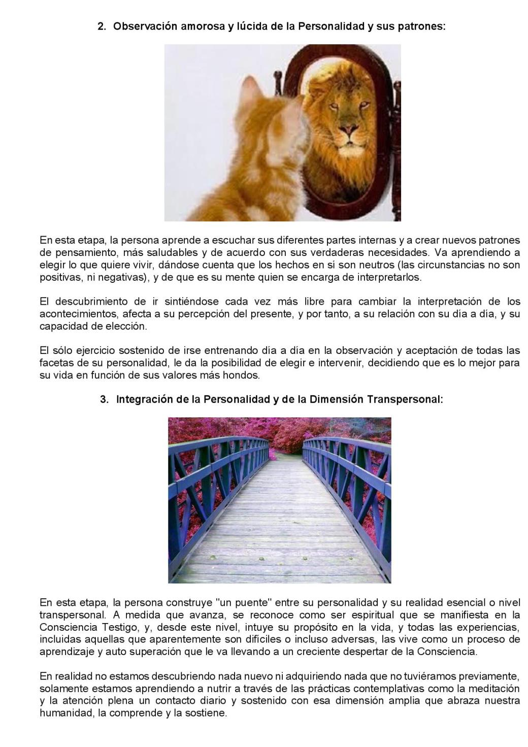 Terapia Transpersonal-page-003