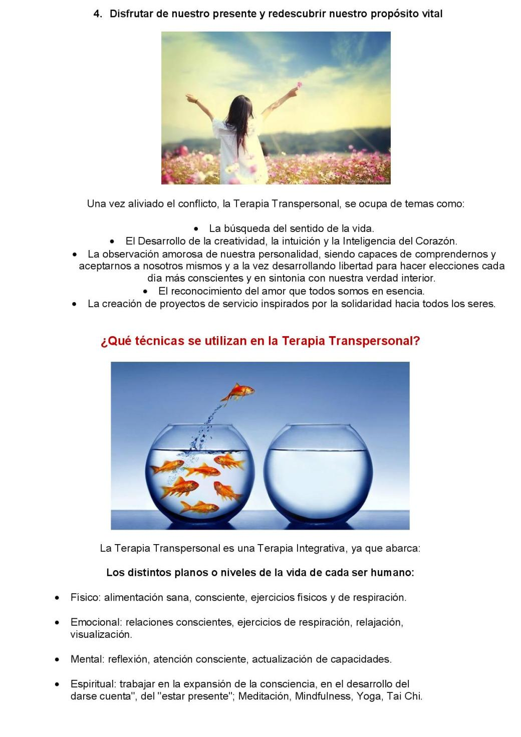Terapia Transpersonal-page-004
